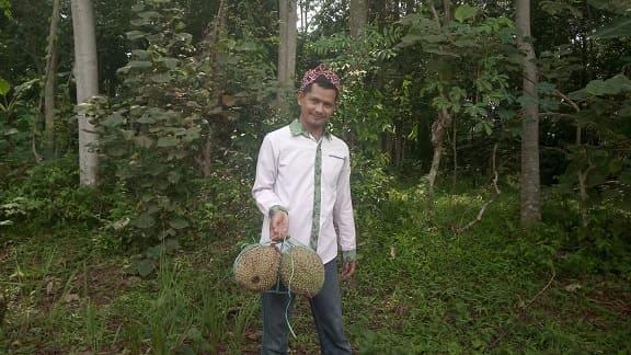 Jual Kebun Durian Jonggol